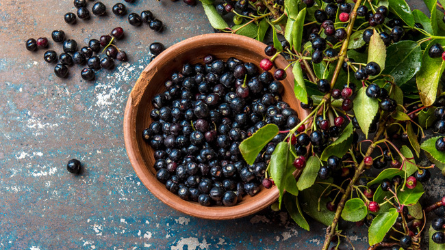 Maqui Berry Superfood For Smoothies