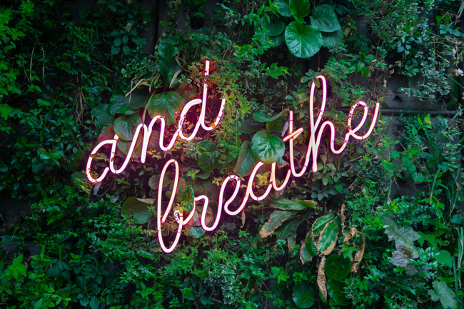Spring Cleanse Breathe